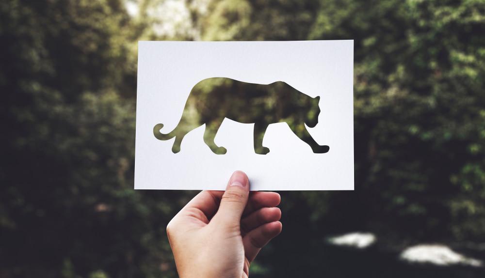 Symbolbild Markenbildung: Entdecken Sie die Stärke Ihrer Marke